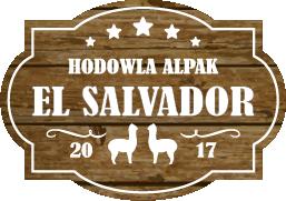 Hodowla Alpak EL SALVADOR