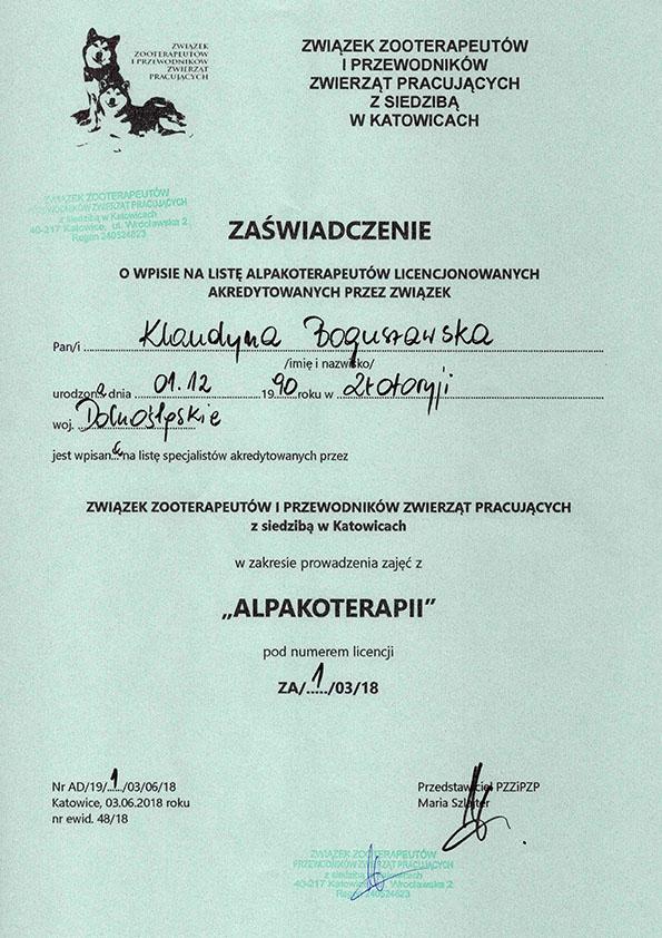 Hodowla alpak EL SALVADOR, alpakoterapia, alpaki, Nowy Sącz, Chełmiec, Biczyce